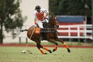 Hurlingham And Palermo Playoffs: #007770