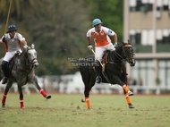 Hurlingham And Palermo Playoffs: #007767