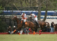 Hurlingham And Palermo Playoffs: #007761