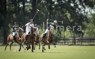 All Pro Polo League: #040015