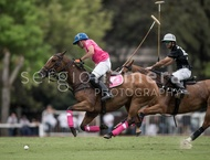 Ellerstina vs. Alegria: #037531