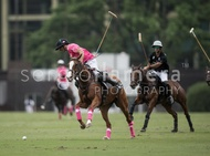Ellerstina vs. Alegria: #037527