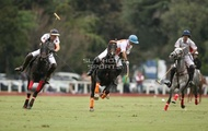 Hurlingham And Palermo Playoffs: #007765