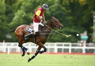 113º Argentine Open Championship Movistar / El Paraiso Polo Team vs. Hurlingham