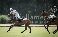 All Pro Polo League: #040006