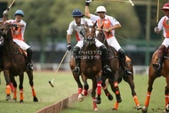 Hurlingham And Palermo Playoffs: #007759