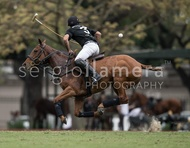 Ellerstina vs. Alegria: #037530