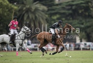 Ellerstina vs. Alegria: #037525