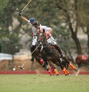 Hurlingham And Palermo Playoffs: #007760