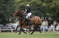 Ellerstina vs. Alegria: #037528