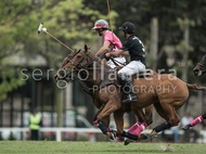 Ellerstina vs. Alegria: #037529