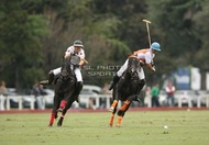 Hurlingham And Palermo Playoffs: #007762