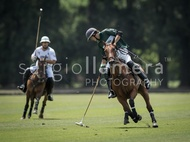 All Pro Polo League: #040009