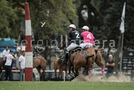 Ellerstina vs. Alegria: #037533