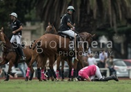 Ellerstina vs. Alegria: #037523